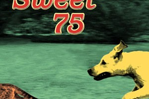 Sweet 75 - Fetch album copertina