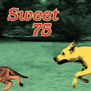 Sweet 75 - Fetch album copertina